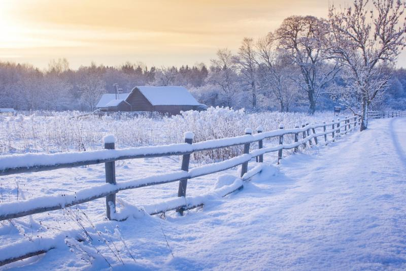 snowy fence on farm