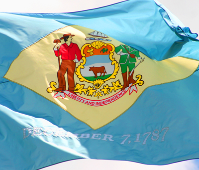 state flag icon