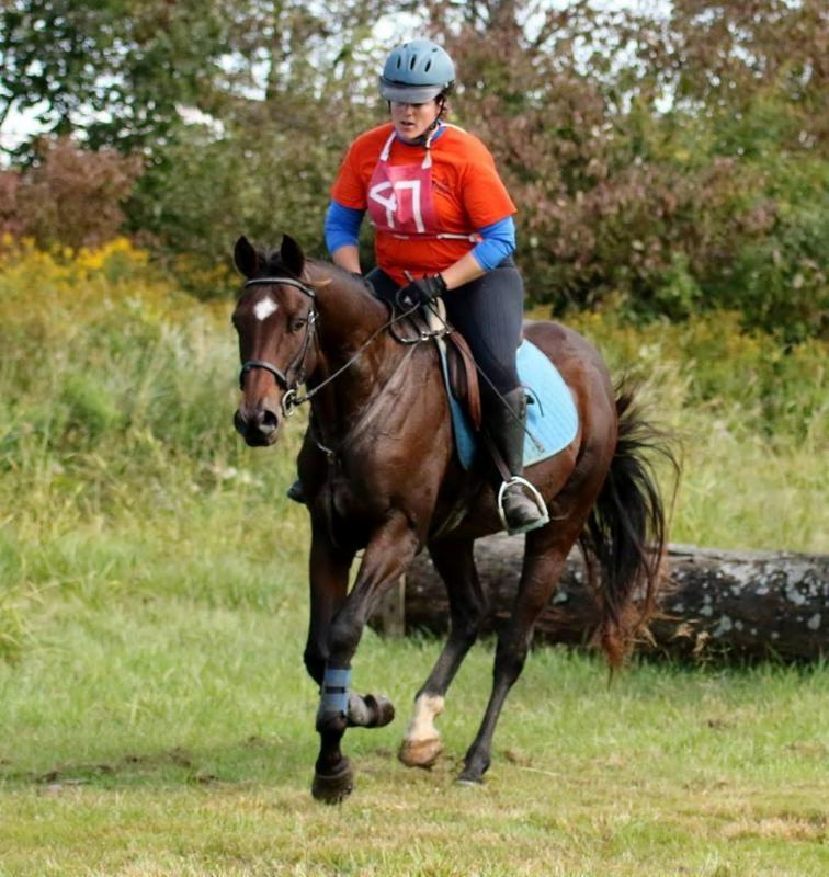 Erie Hunt and Saddle Club :: News