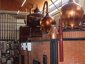 Calvados region distillery