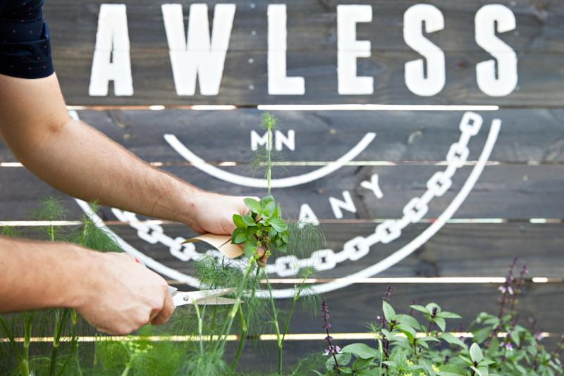 Lawless Distilling_s herb garden