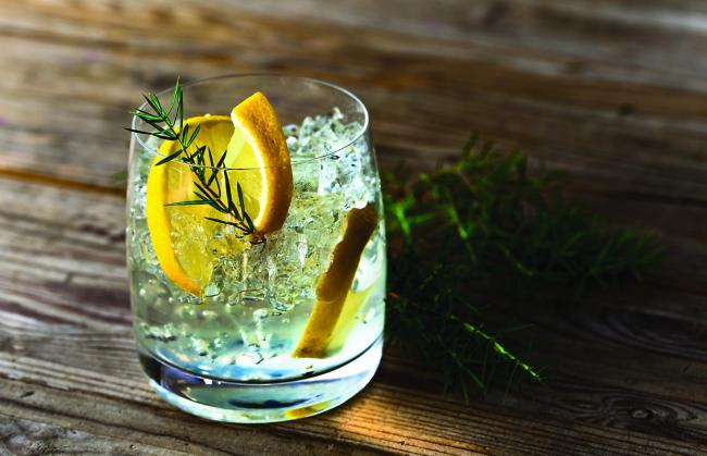 Gin and tonic with citrus