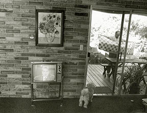 Bill Owens_  Untitled _Nixon on TV__ from the series Suburbia_ 197