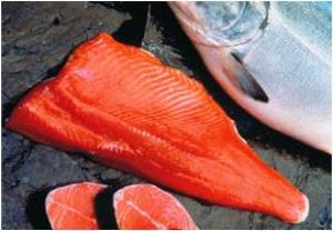 Coho Salmon Fillet