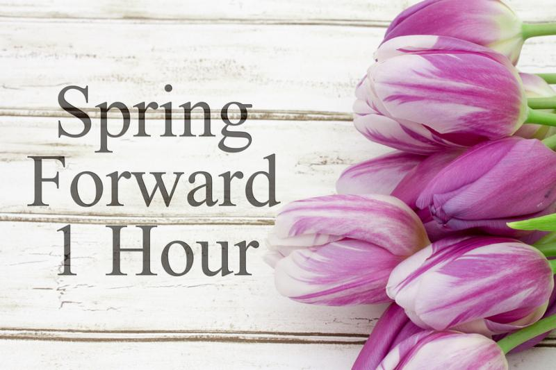 Spring Time Change Some tulips with weathered wood and text Spring Forward 1 Hour