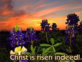 Christ is risen.