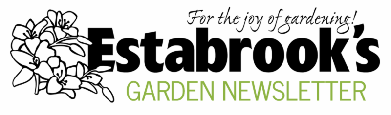 Estabrook_s Garden Newsletter