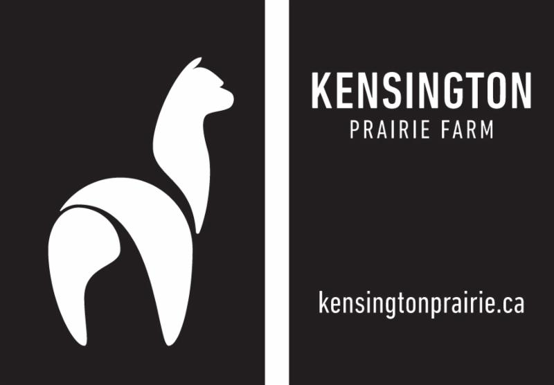 Kensington Prairie Farm premium alpaca purveyor