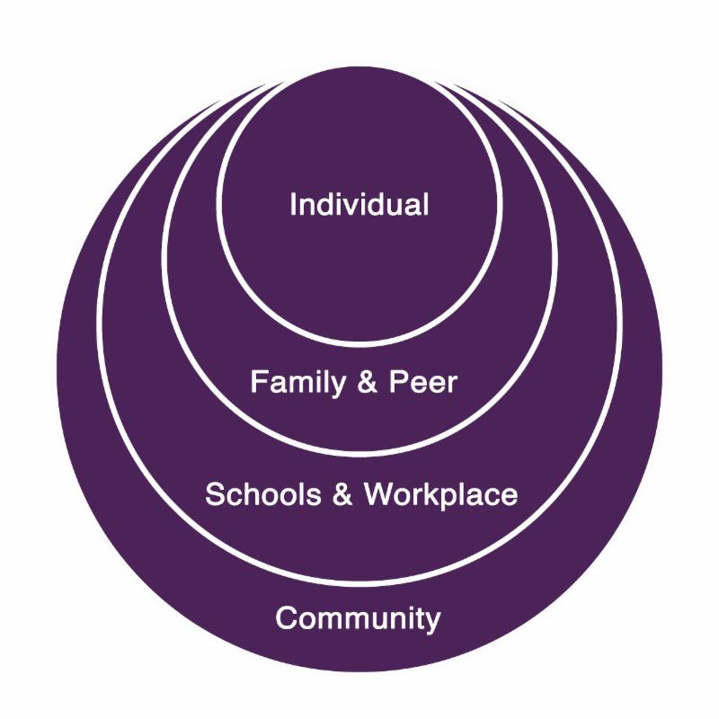 The social ecology layers (individual, family and peers, schools and workplaces, and community)