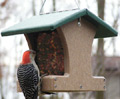 Birds Choice Recycled Feeders