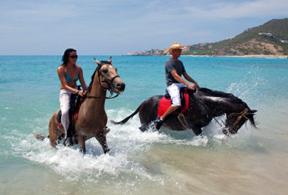 st martin horseback