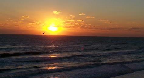 nsb sunset