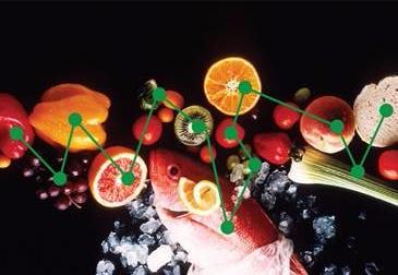 A photograph of fruits_ vegetables_ proteins_ and grains overlaid with connecting dots