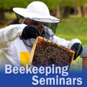 Beekeeping Sem