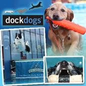 DockDogs Days
