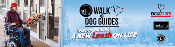Pet Valu Walk for Dog Guides