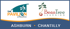 DullesMoms.com Newsletter Sponsor: BeanTree Learning
