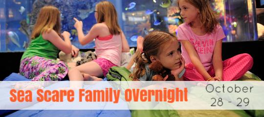 Sea Scare Family Overnight