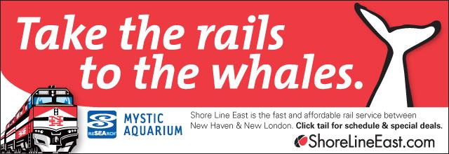 SLE rails to whales