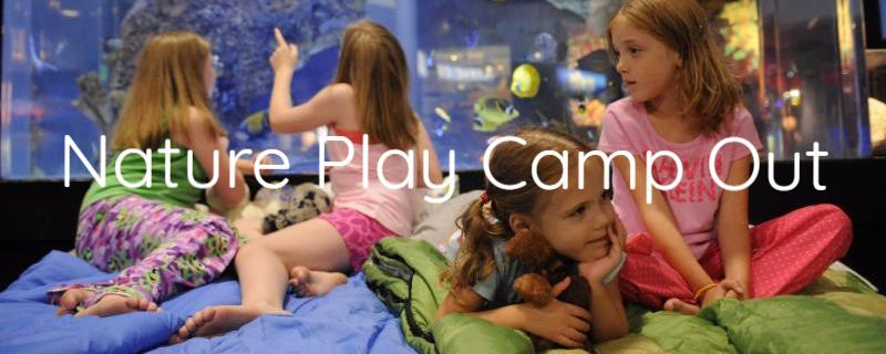 Nature Play Camp Out