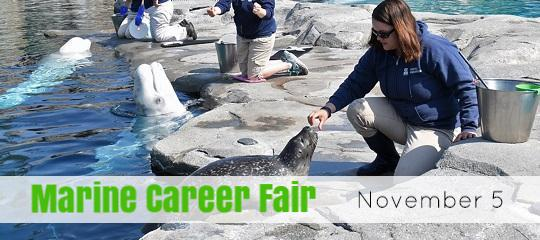 Marine Career Fair