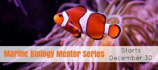 Marine Biology Mentor Series