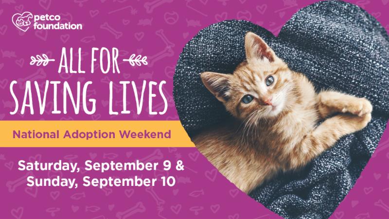 Petco National Adoption Weekend sept2017