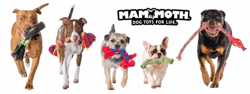 Mammoth Lifestyle Dogs Line-Up