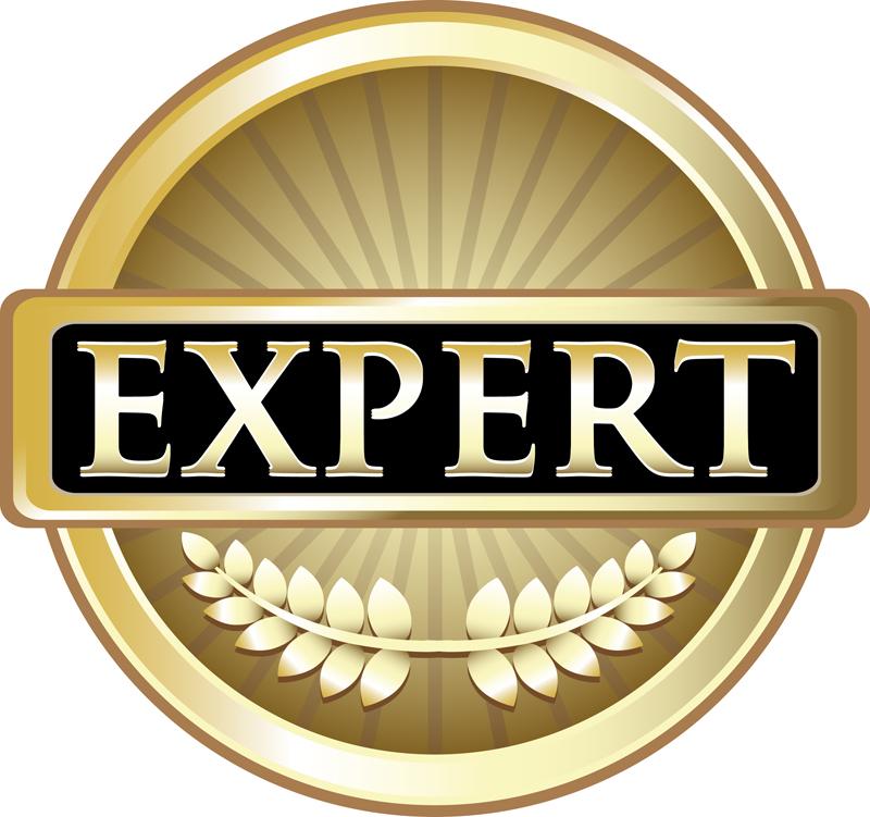 Utility Audit Experts