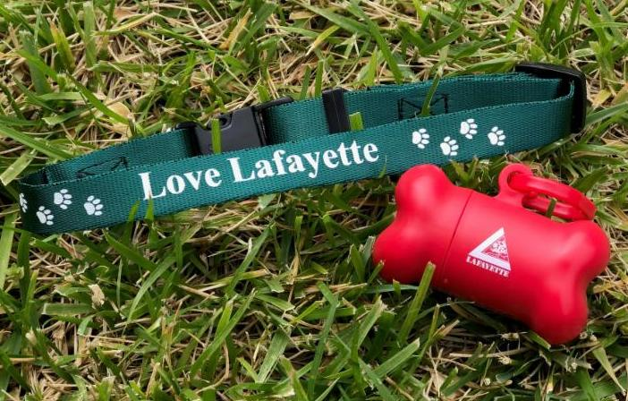 Love Lafayette Dog Collar