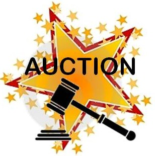 Auction_graphic