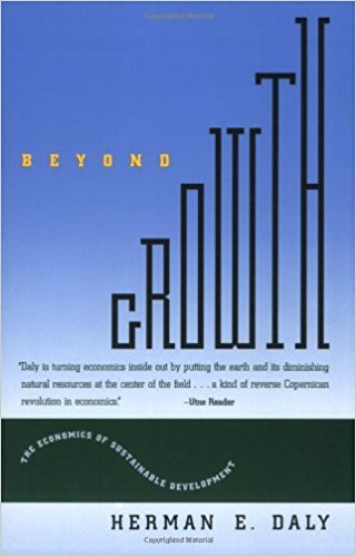 Beyond Growth Book cover