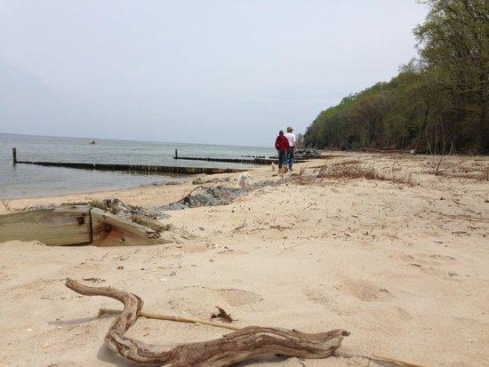 Westmoreland State Park beach photo