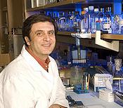 Dr. Manjili in lab