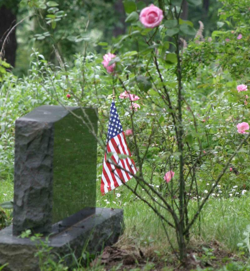 Memorial Day Flag & Rose