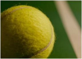 Tennis Ball Picture