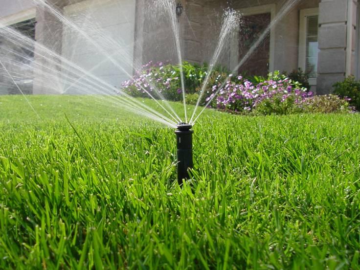A Sprinkler irrigates a house lawn