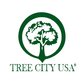 Tree City USA Logo- A green tree on a white background