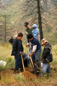 watershed restoration plant trees