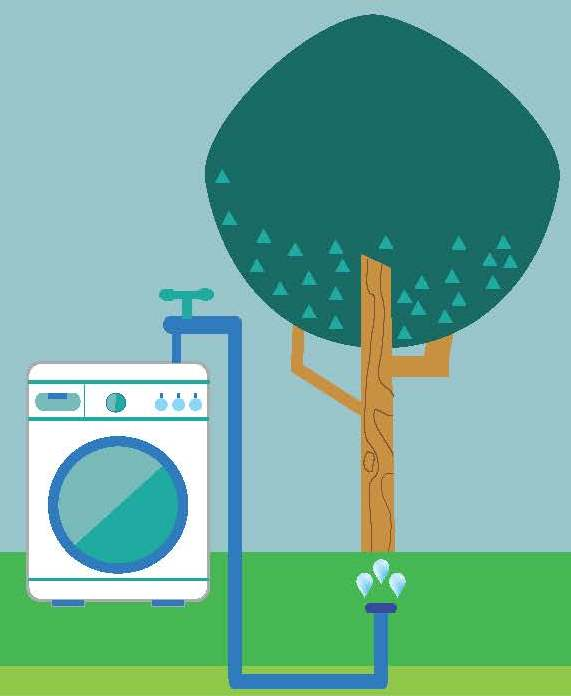 laundry to landscape greywater