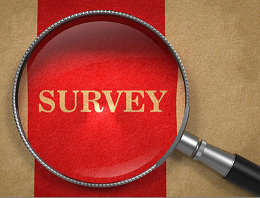 survey with magnify glass