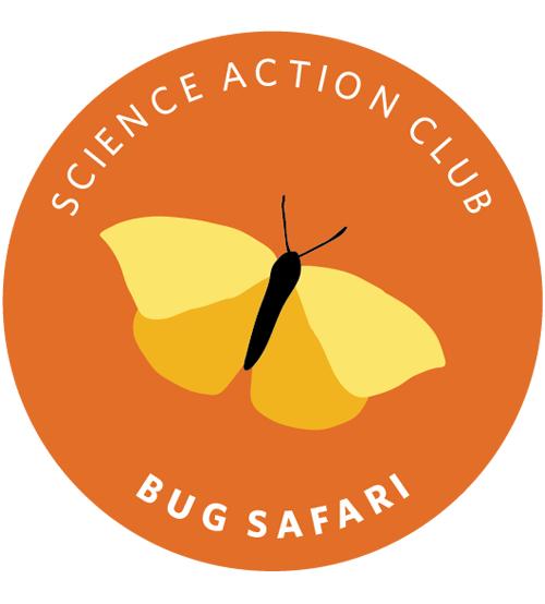Science Action Club Bug Safari