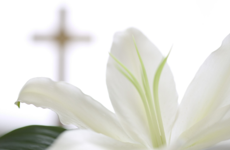Easter Lilly _ Cross