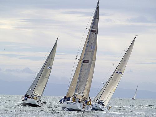 Photo_ race boats