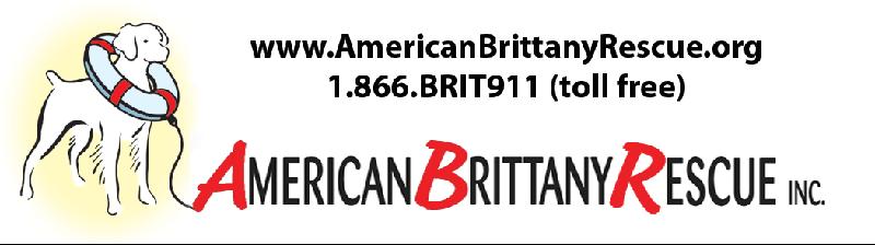 ABR Logo for header