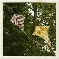 fabric kites