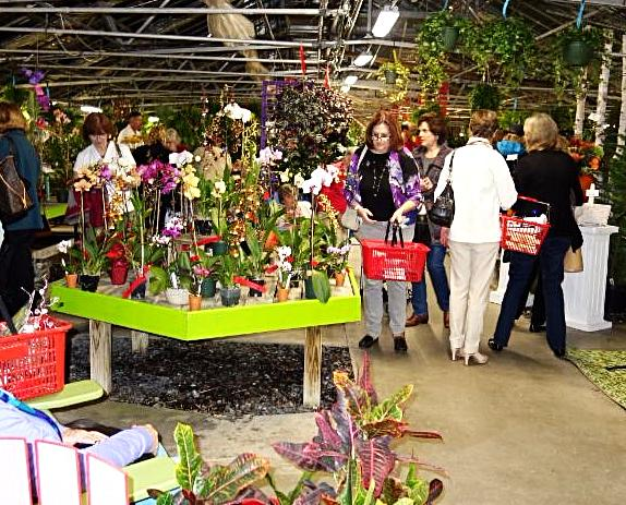 15 off at ladies 39 night out tomorrow for Russell s garden center wayland ma