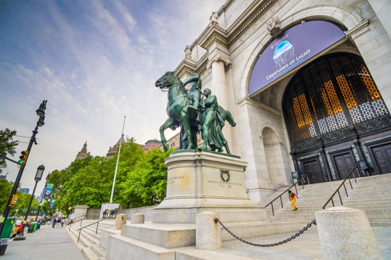 nyc_museum.jpg