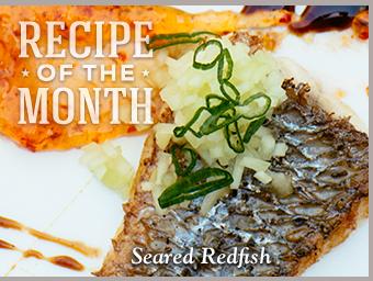Seared                                                            Redfish