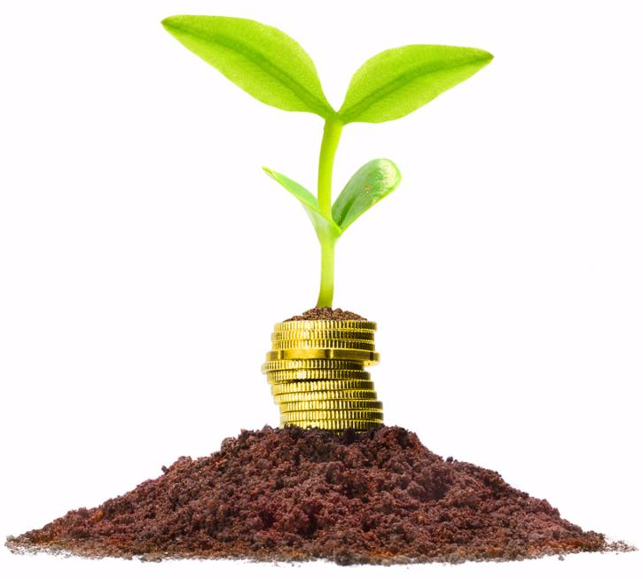 Money growth and savings concept.